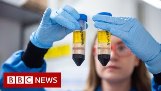 Coronavirus: When can I get the COVID-19 vaccine? - BBC News