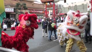 Chinese New Year Lion Dance- Grand Finale