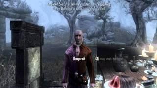 The Mad Violinist {Symphony Crack} -