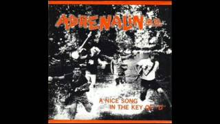 "Adrenalin O.D.-A Nice Song in the Key of ""D"""