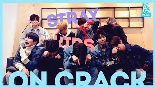 Stray Kids on Crack (The 9th)
