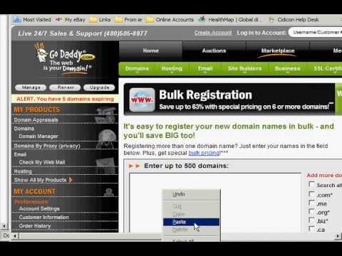 GoDaddy Bulk Domain Name Lookup