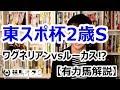 【2017東京スポーツ杯2歳S】ワグネリアンvsルーカス⁉(有力馬解説)