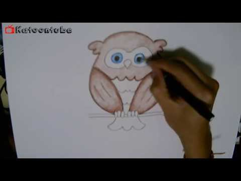 นกฮูก สอนวาดรูปการ์ตูนง่าย น่ารัก สอนวาดรูปการ์ตูนระบายสี   How to Draw Owl Cartoon