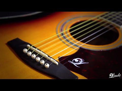 Lindo Guitars - Zebra Electro-Acoustic Guitar With EQ - Demonstration