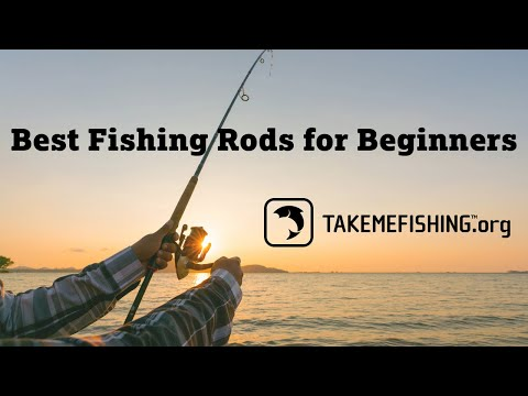 Best Fishing Rods For Beginners | How To Fish