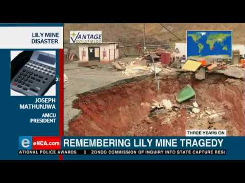 Lily Mine: Three Years On