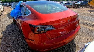Copart Walk Around + Carnage 6-11-19 Tesla Model 3