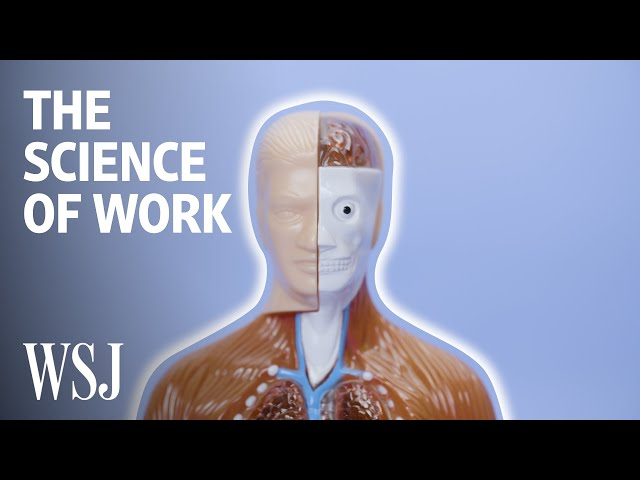 How Job Stress Affects Your Health | WSJ