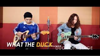 Duck Off Stage - De Flamingo