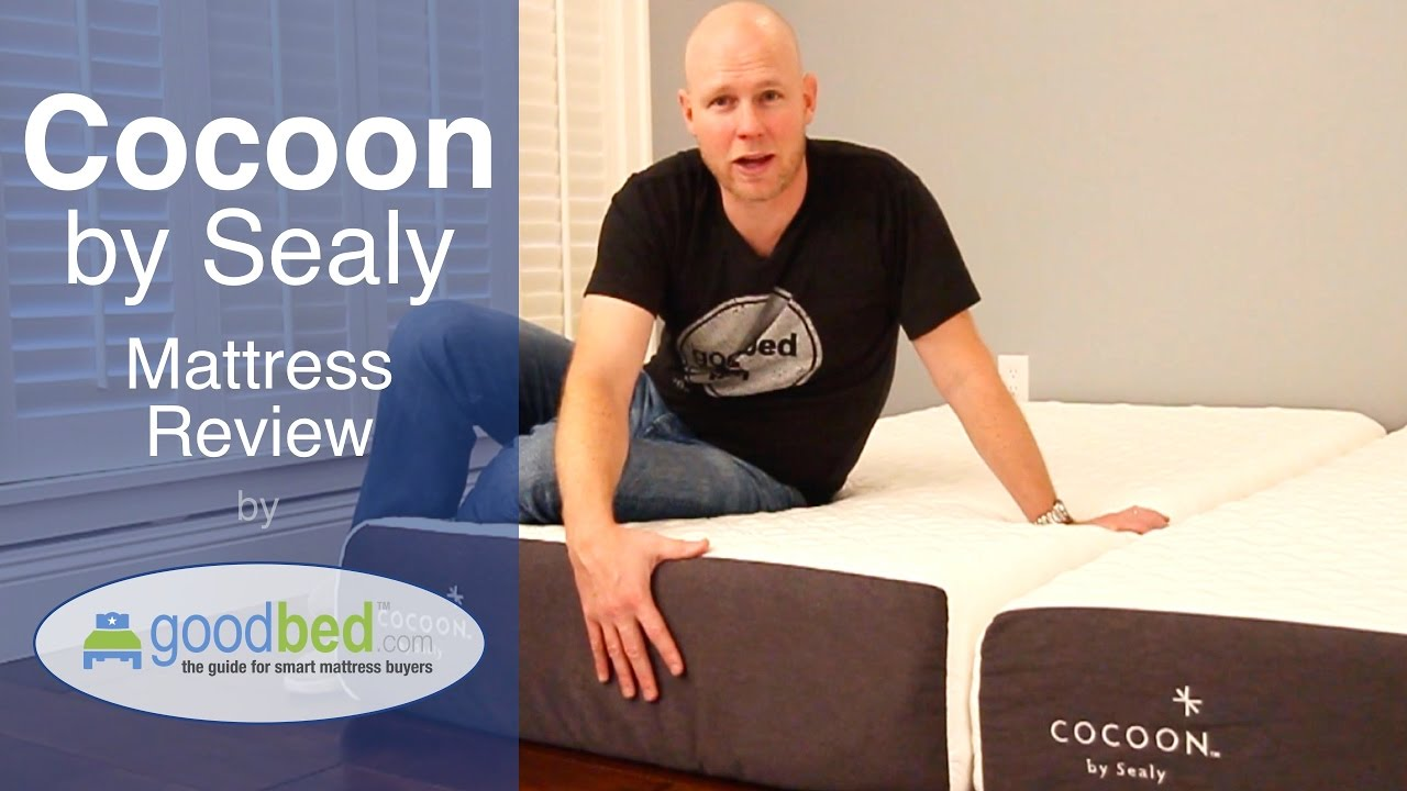 cocoon by sealy mattress review by goodbedcom