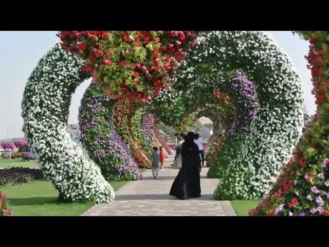 Смотреть видео Чудо-сад в Дубае.