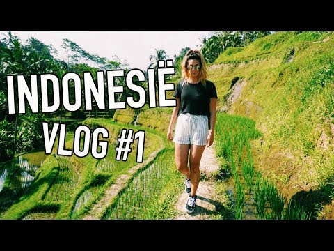 LARISSA IN INDONESIË - VLOG #1