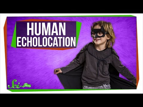 how-some-people-echolocate-like-bats
