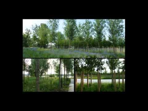 """""""Intermediate Natures"""" - Michel Desvigne"""