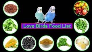 Love Birds Food || Lovebirds Food List