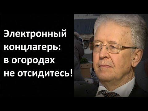 Валентин Катасонов. Электронный