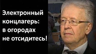 Валентин Катасонов. Электронный концлагерь: в огородах не отсидитесь!