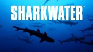 Sharkwater Trailer [HD] Deutsch / German