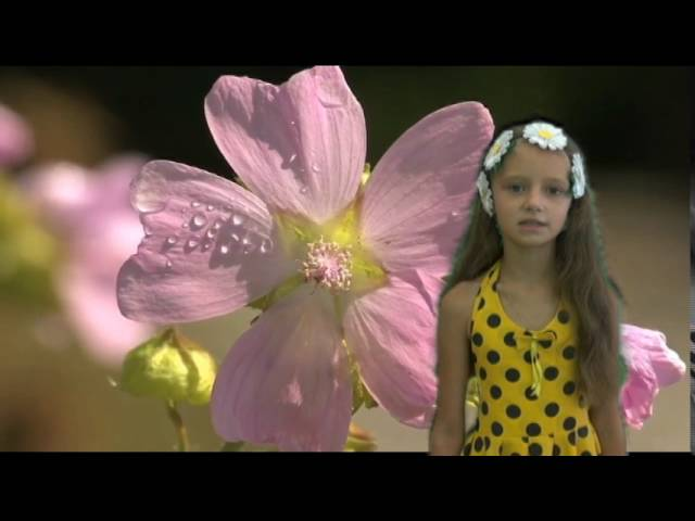Анастасия Баранова читает произведение «Полевые цветы» (Бунин Иван Алексеевич)