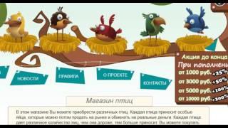 Money-Birds,Profit-Birds,Rich-Birds,Golden Birds - Заработок на яйцах и птицах.