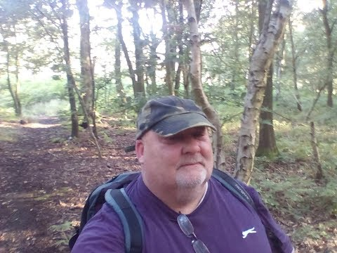 Adventure In Wombwell Woods