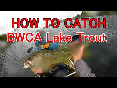 Tactics For BWCA Lake Trout In Late May - Knife Lake, BWCAW