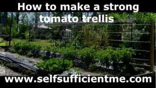 How To Make A Strong Tomato Trellis