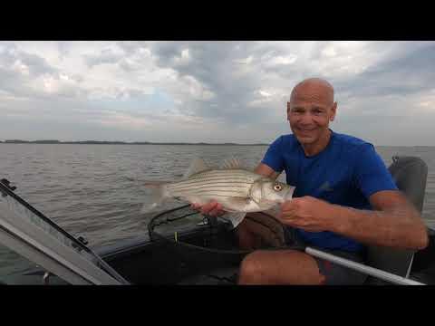 Eldorado Lake Big Wiper Frenzy! Kansas Fishing