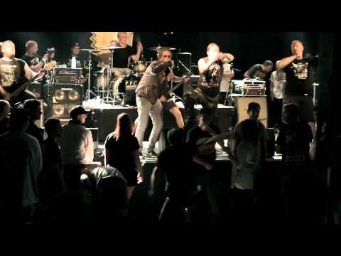 Born from Pain - When we were Kings Live @ Still Cold Fest 2013 (HD)