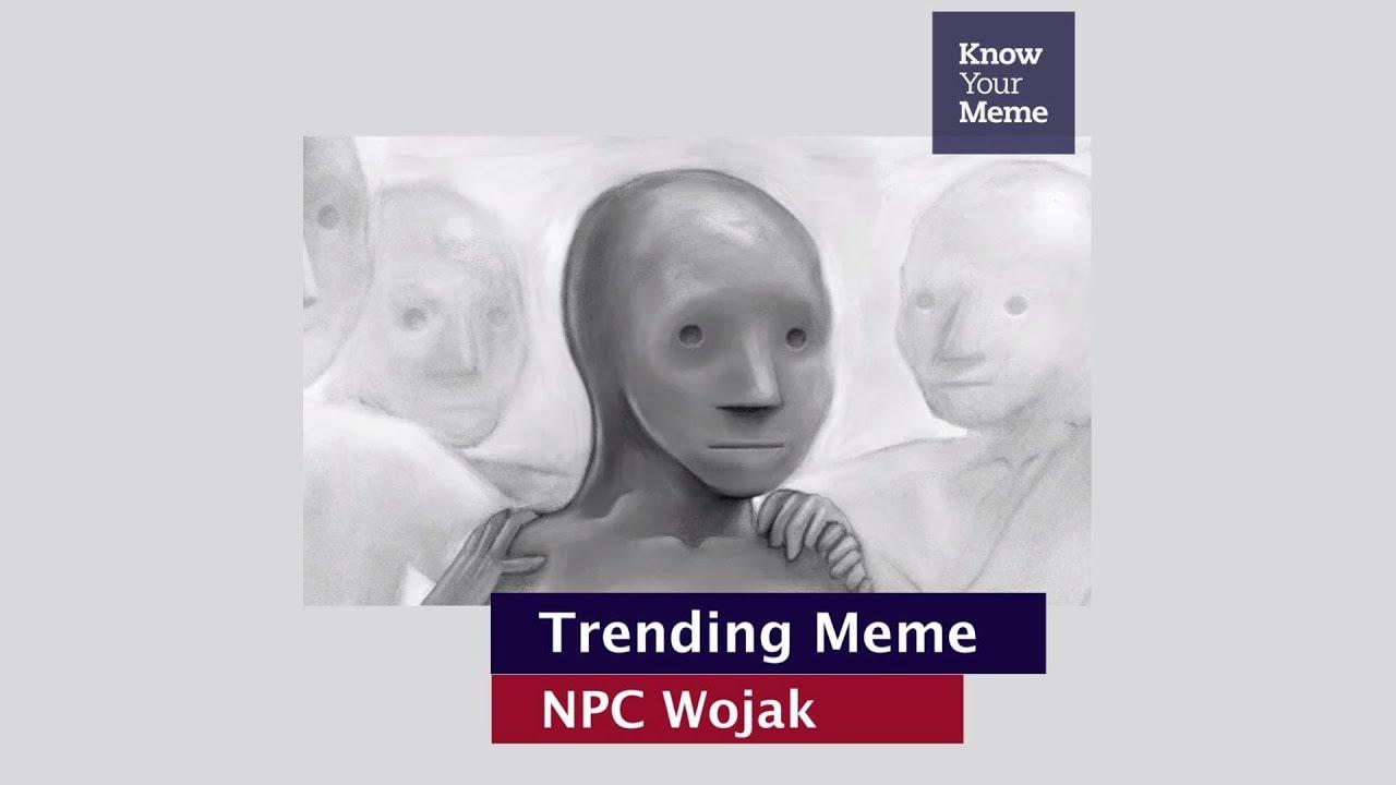 Know Your Meme 101: NPC Wojak