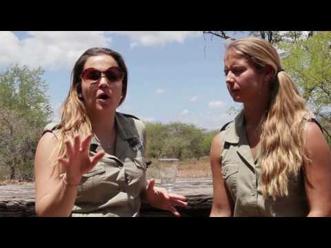 Rhino Revolution Rehabilitation Centre