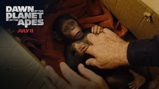 Repeat youtube video Dawn of the Planet of the Apes | Caesar's Story [HD] | 20th Century FOX