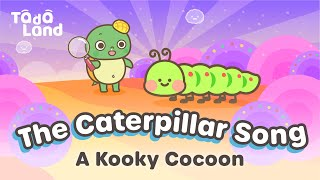 A Kooky Cocoon   The /ck/ Song   Phonics Songs for Kids   Learn English With Music