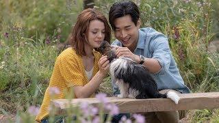 A Dog's Journey Henry Lau myxTV Interview