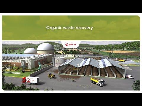 Organic waste recovery   Veolia
