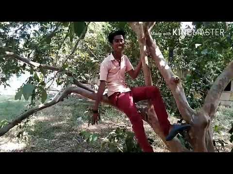 Gana Harish love song
