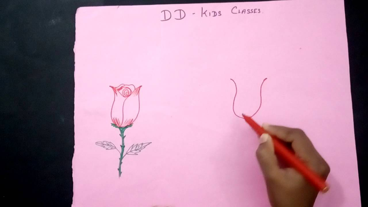 How To Draw A Rose Flower Simple Rose Flower Drawing For Kids