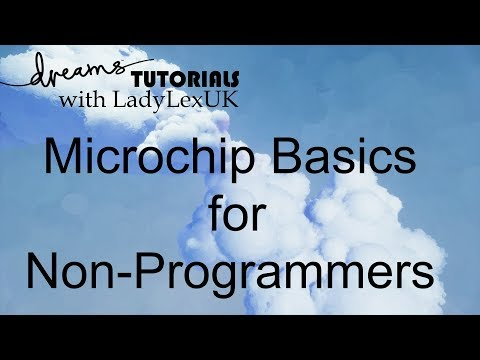 Dreams PS4 Tutorial: Microchip Basics For Non-Programmers
