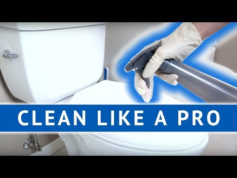 CLEAN LIKE A PRO: Cleaning the Toilet!