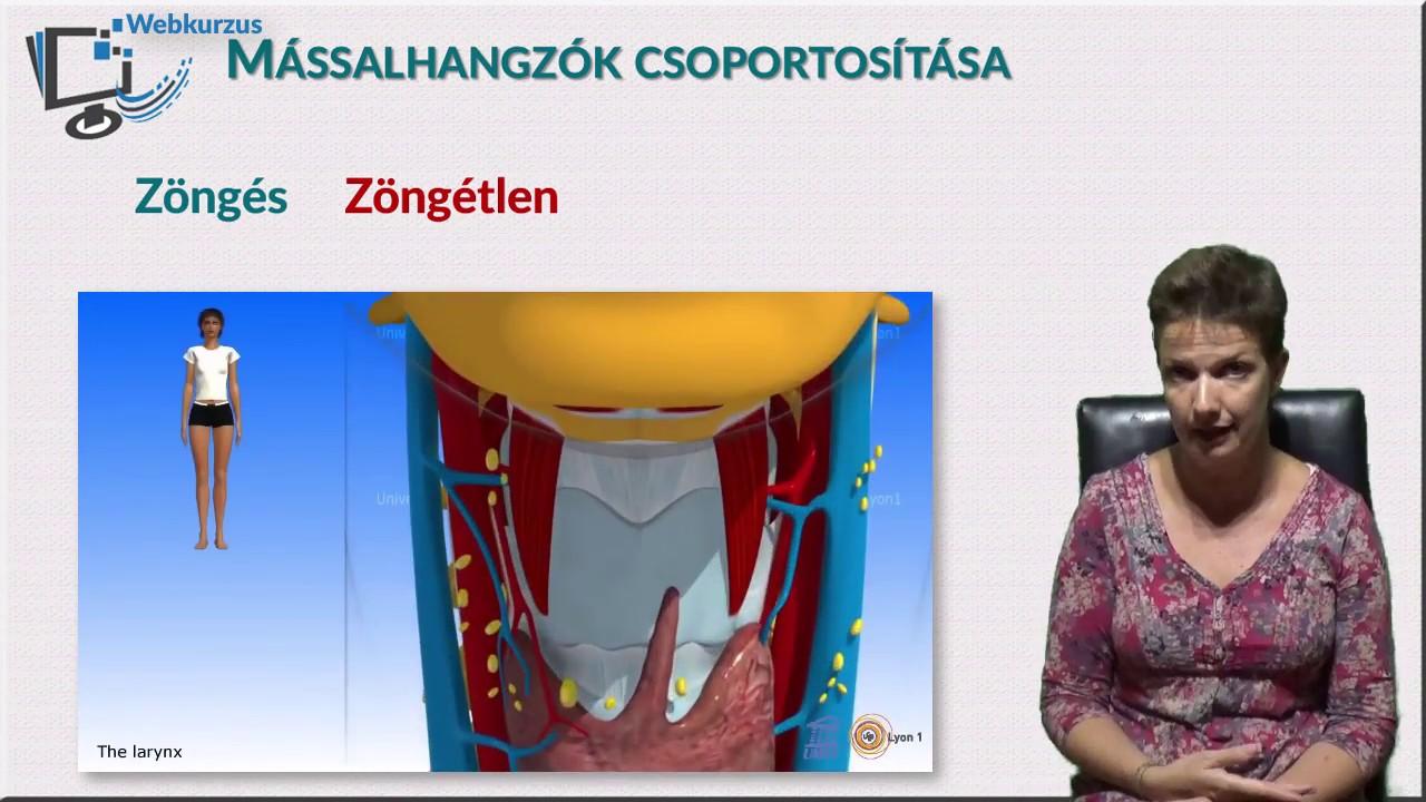 lehetséges-e a sérült látás helyreállítása megakadályozza a rövidlátást
