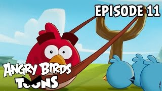 Angry Birds Toons | Slingshot 101 - S1 Ep11