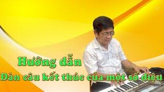 Hướng dẫn đàn câu kết thúc của một số điệu