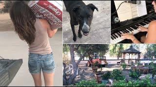 Casual Weekend Vlog