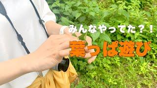登下校中よく遊んだ?!葉っぱ遊び〜鳴滝番外編〜