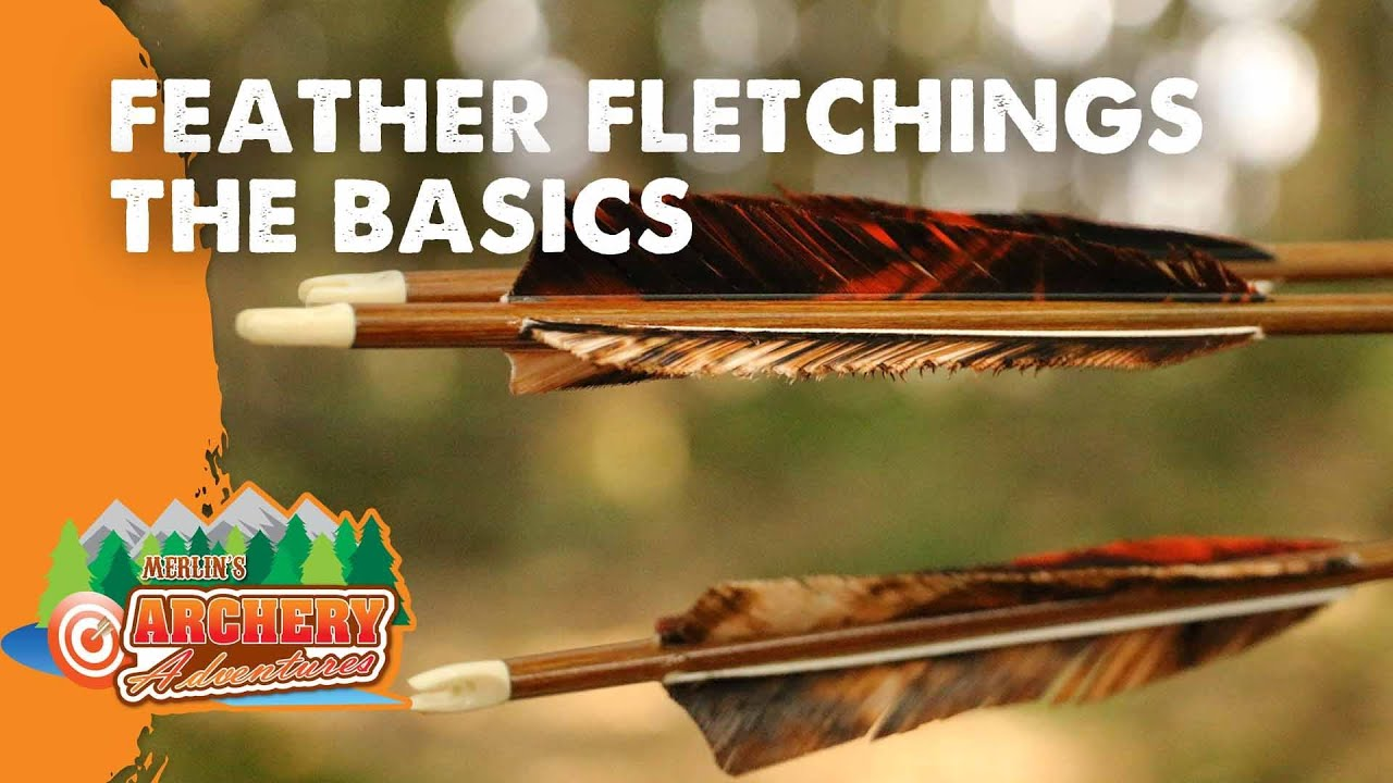Feather Fletchings the basics (how to identify right and left wing feathers)