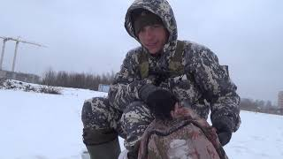 Окунь в Подмосковье или Снежная рыбалка !