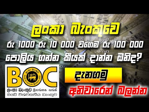 Newly Updated BOC Bank Interest Rate | Fixed Deposits In Srilanka Questions And Answers