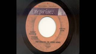 Watch Sammy Davis Jr The Shelter Of Your Arms video