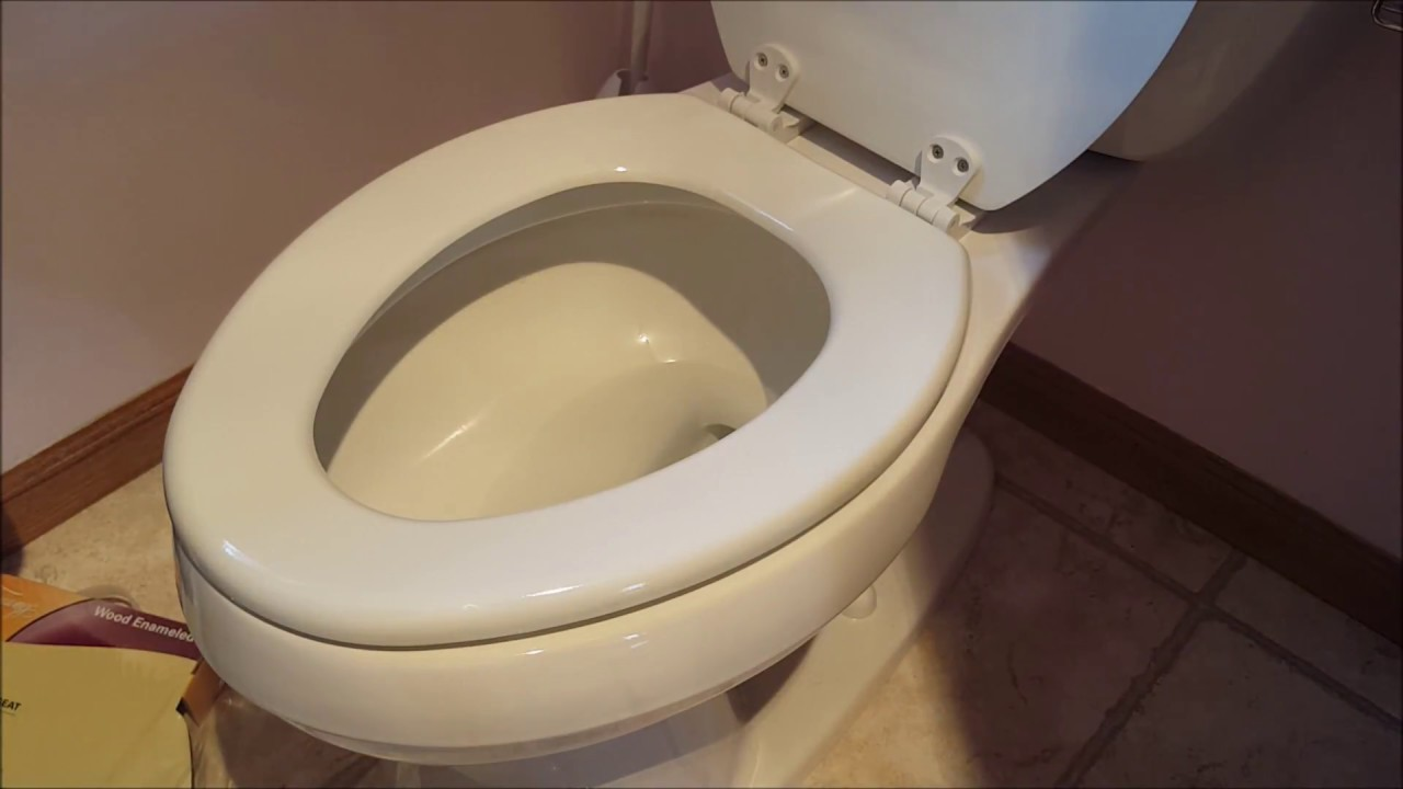 Diy 101 How To Remove Amp Replace A Toilet Seat Youtube
